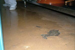 エポキシ剥がれが起きている状態の床