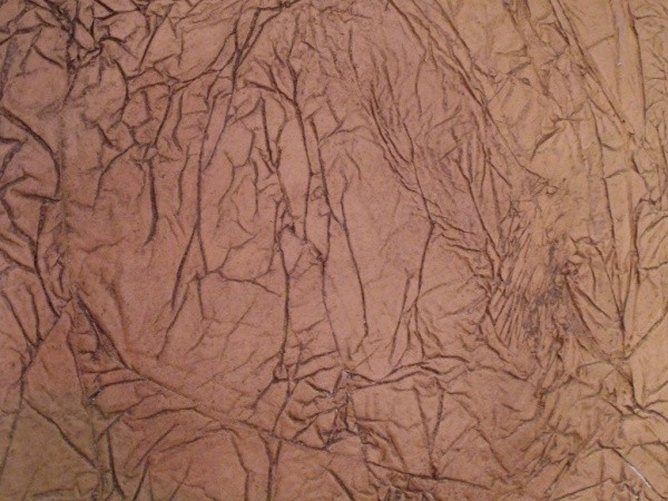 オルトレマテリア OLTREMATERIA 自然の収縮を表したサンプル まばらな網目状