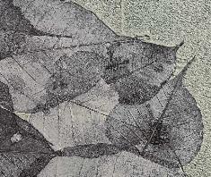 オルトレマテリア、モノトーン調で仕上げた葉っぱを埋め込んだサンプル