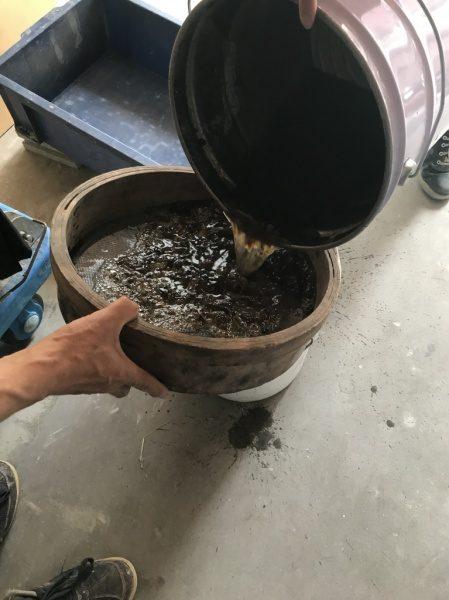 ツノマタを濾して糊を抽出します