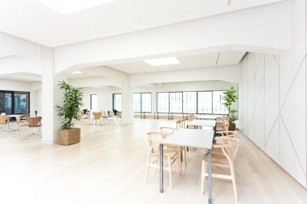 白いモールテックスの壁の部屋全体図、沢山の机と椅子や窓があり、観葉植物もある