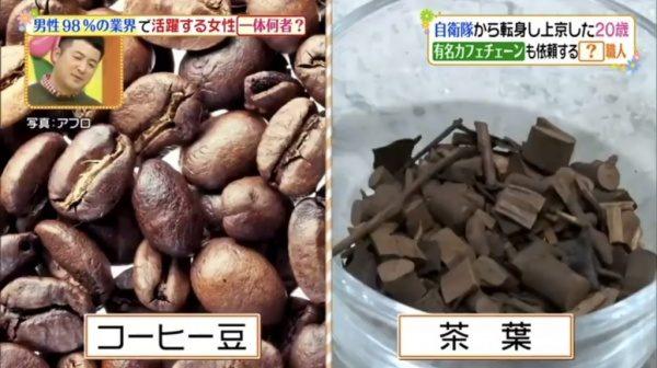 ヒルナンデス12月18日放映。コーヒー豆と茶葉
