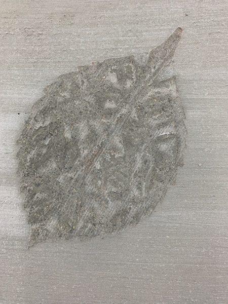 モルタル葉っぱ模様転写