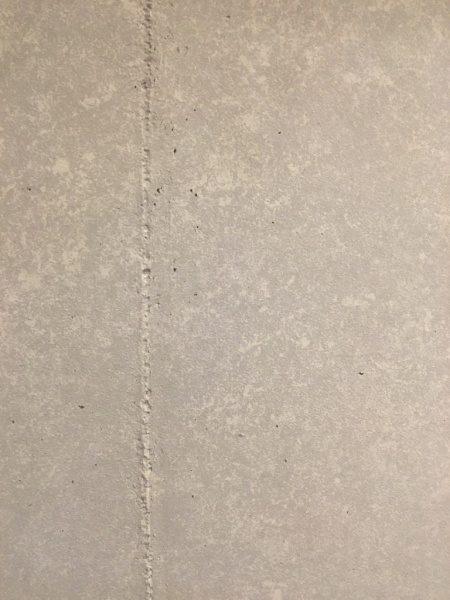 フローズンフルーツバーのコンクリート打ち放し風仕上げ壁面